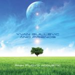 Yvan Guillevic & friends - Pink Floyd Acoustic
